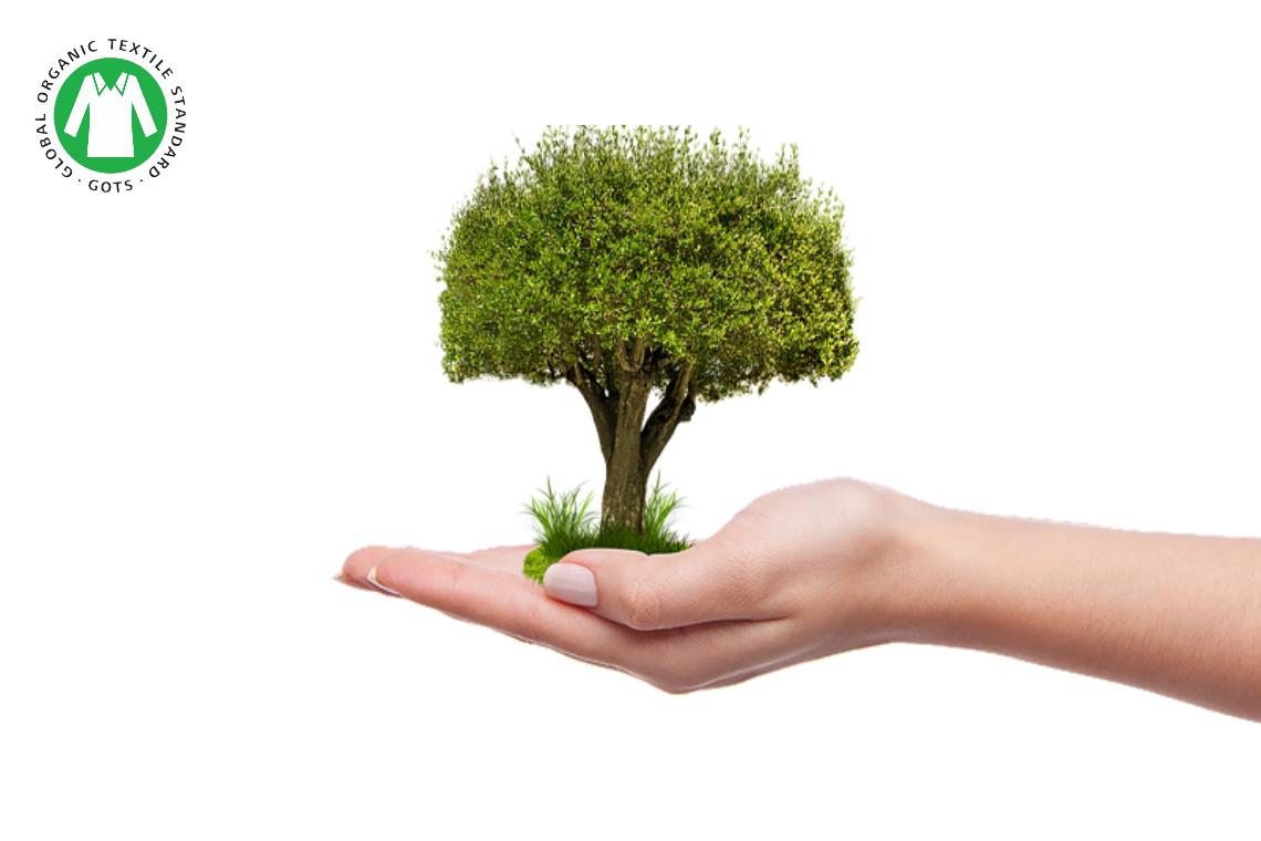 El consumo de algodón orgánico gana seguidores