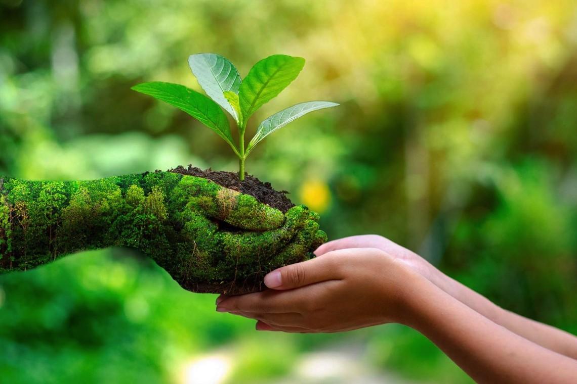 La pasión por la sostenibilidad en la industria textil